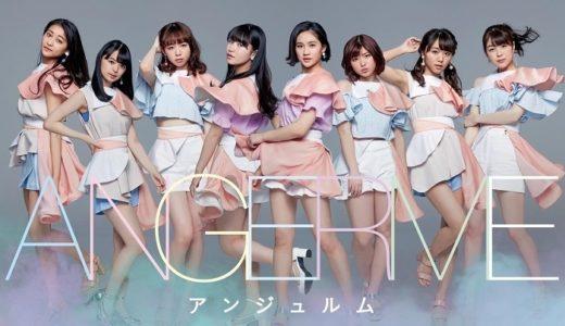 アンジュルム STARTING LIVE TOUR SPECIAL @日本武道館をたった800円で見る裏技とは!?